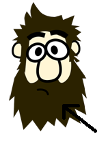 de baard