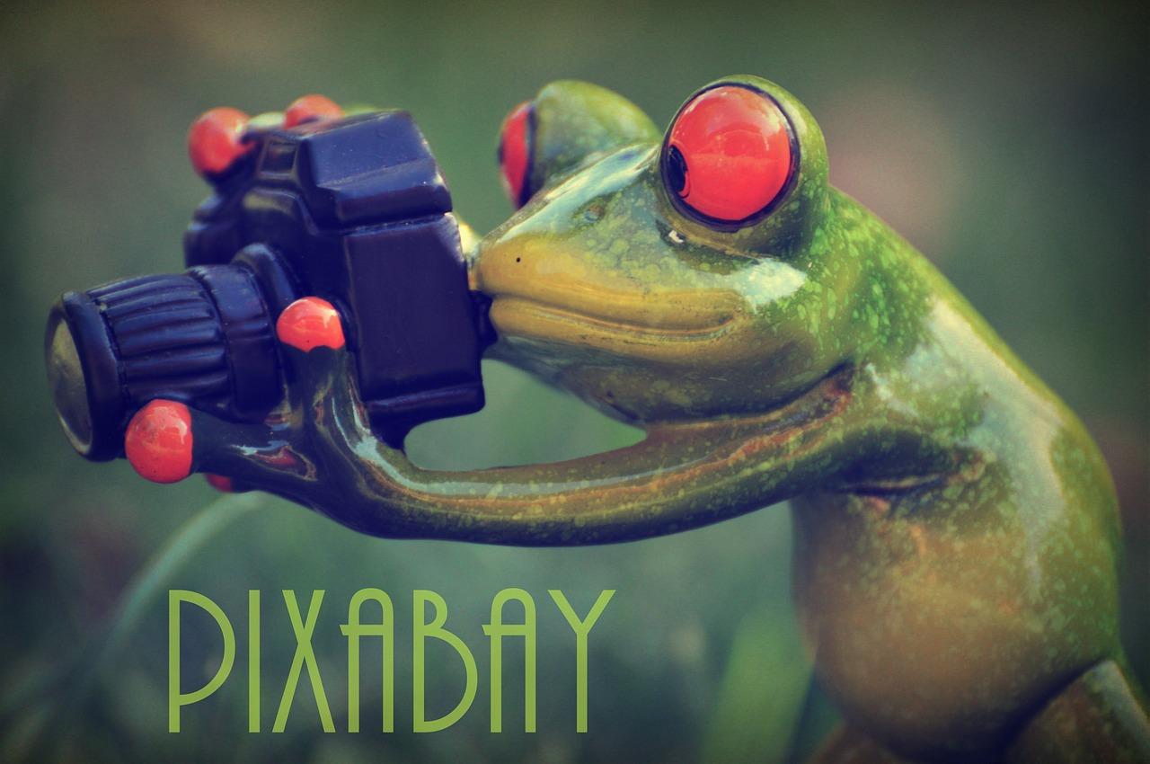 pixabay-868437_1280